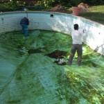 reparacion piscina 5