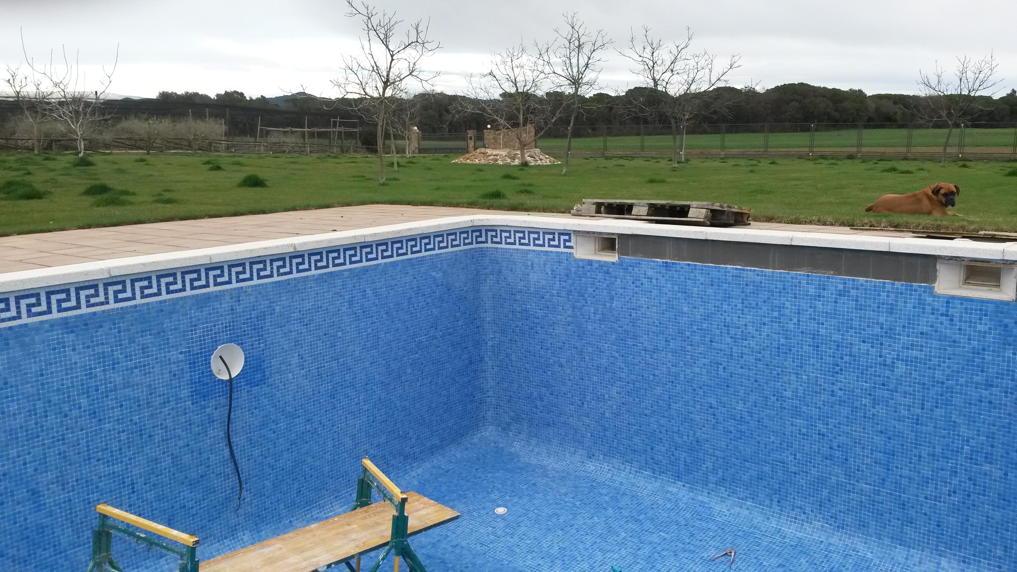 Reparaci n de piscinas cenefa y corona piscines bravi s l for En la piscina